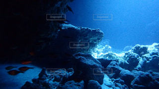 海底の世界の写真・画像素材[2387713]