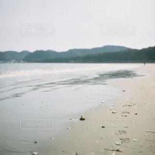 海辺の写真・画像素材[743546]