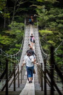寸又峡 夢の吊り橋の写真・画像素材[757769]