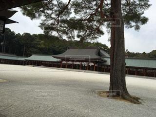 橿原神宮の写真・画像素材[747937]