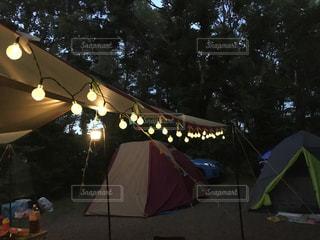 キャンプでのイルミネーションの写真・画像素材[744403]