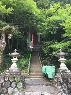 神社の階段 - No.745213