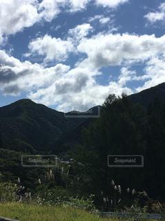 羊山の上に立っての群れの写真・画像素材[744643]