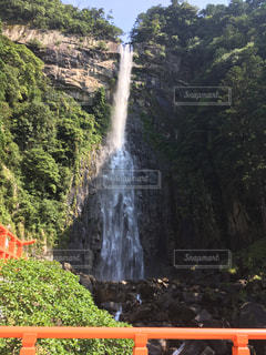 森の中の大きな滝の写真・画像素材[748188]
