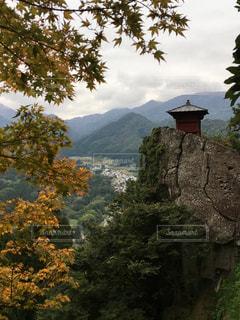 大きな岩の前に木の写真・画像素材[842167]