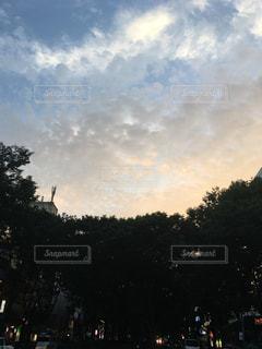 都市に凧の飛行の人々 のグループの写真・画像素材[1388498]
