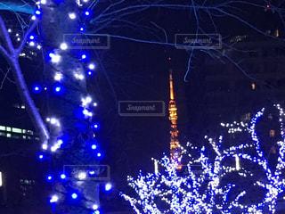 夜のライトアップされた街の写真・画像素材[745131]