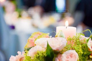 花のクローズアップの写真・画像素材[2338800]