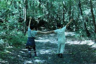 森を歩くカップル - No.750990