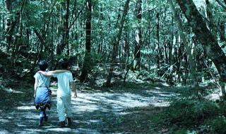 森を歩くカップル - No.750991