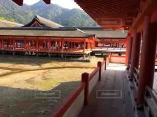 厳島神社の写真・画像素材[746738]