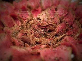 肉の写真・画像素材[23611]