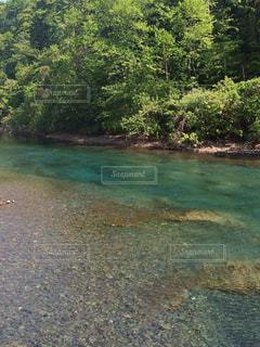 水の体の写真・画像素材[747156]