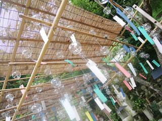 風鈴祭りの写真・画像素材[747733]