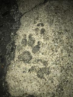 コンクリートと足跡の写真・画像素材[747922]