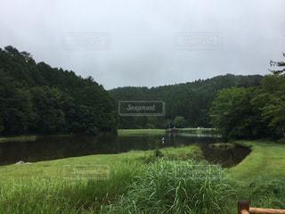 水の体の横に緑豊かな緑のフィールドの写真・画像素材[748530]