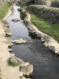 近所の川の写真・画像素材[748441]