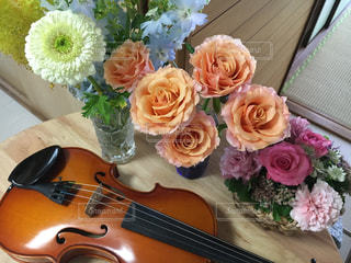 花とバイオリンの写真・画像素材[750018]