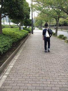 どこまでも続く道の写真・画像素材[756725]