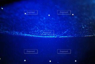 青い水槽の写真・画像素材[806031]