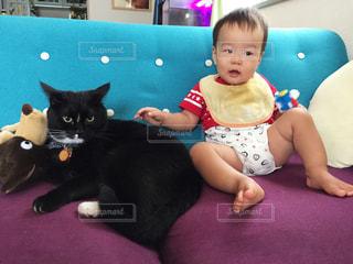 ソファでくつろぐ猫と子供の写真・画像素材[1587960]