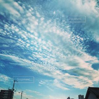 秋を感じたうろこ雲の写真・画像素材[750173]