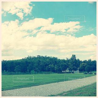 緑と空の写真・画像素材[752668]