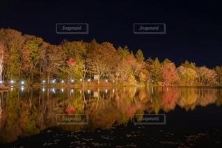 紅葉ライトアップの写真・画像素材[2763122]