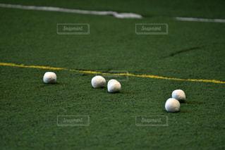 人工芝の上の玉入れの玉の写真・画像素材[766537]
