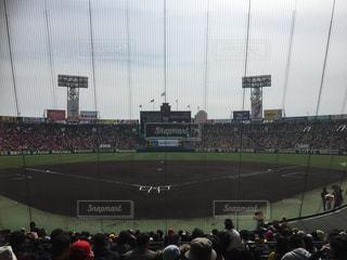阪神甲子園球場の写真・画像素材[751858]