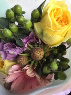 近くの花のアップ - No.765974