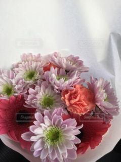ピンクの花束 - No.765975