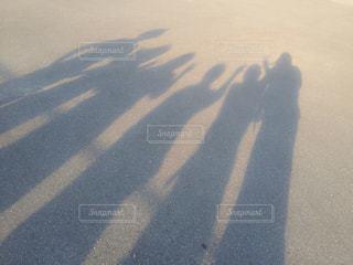 仲間達の写真・画像素材[752463]