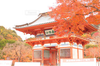 勝尾寺の写真・画像素材[885692]