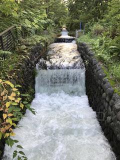 木々 に囲まれた滝 - No.754043