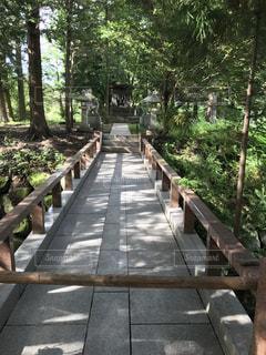 森の横にある空の公園ベンチ - No.754435