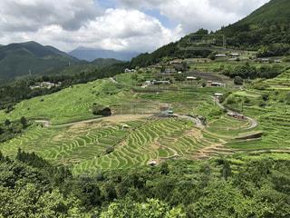 緑豊かな緑の丘の中腹で放牧の羊の群れ - No.755430