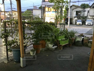 背景の木と家の写真・画像素材[1225617]