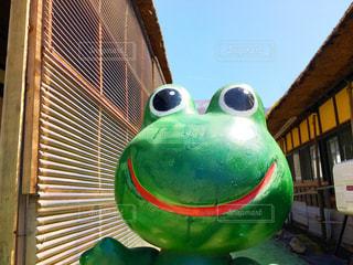 カエルの置き物の写真・画像素材[1099894]