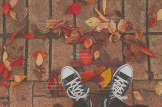 床に靴のグループの写真・画像素材[755657]