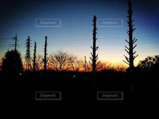 風景の写真・画像素材[21902]