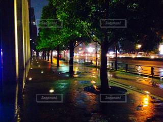 夜のライトアップされた街の写真・画像素材[758073]