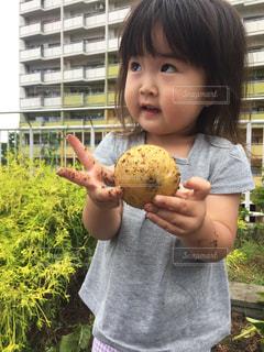 いくつかの料理を食べている男の子の写真・画像素材[764888]