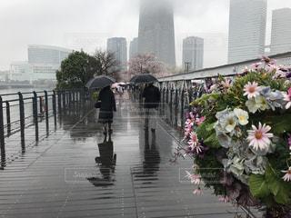 雨の中の結婚記念日の写真・画像素材[757535]