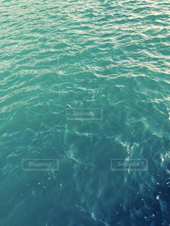 水の中の魚の群れ - No.764295