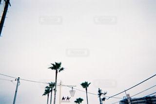 海岸通りの写真・画像素材[759330]