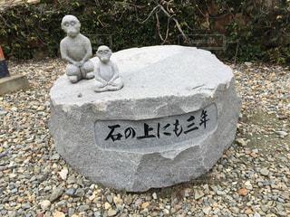 石の上にも三年の写真・画像素材[762978]