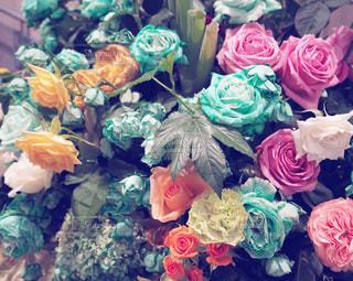 カラフルな花たちの写真・画像素材[1020961]