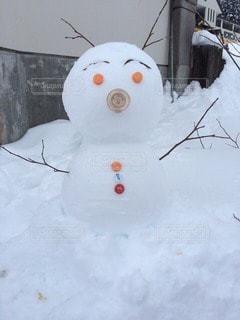 雪の写真・画像素材[27031]