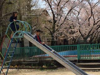 木製のフェンスの上に乗って男の写真・画像素材[1213784]